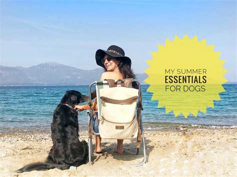 summer essentials  dogs  tropical dog