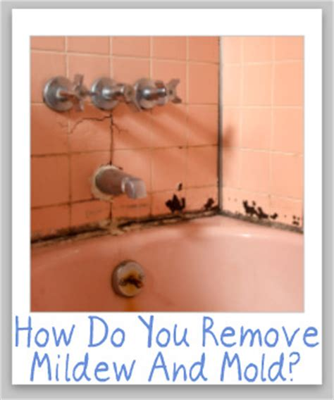 how to kill bathroom mold tips for cleaning removing mildew mold from hard surfaces