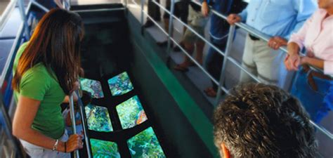 best glass bottom boat tour key west things to do in key west best on key west