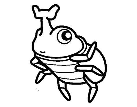 imagenes para colorear rinoceronte dibujo de escarabajo rinoceronte para colorear dibujos net