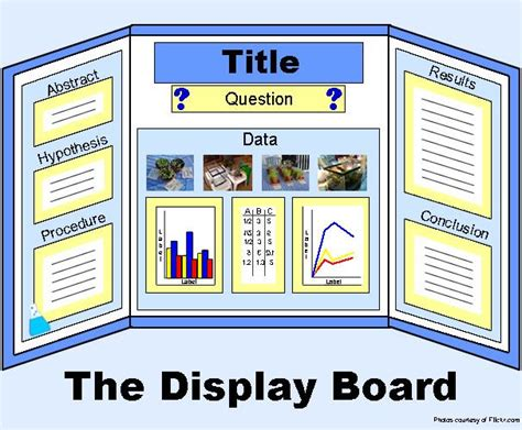 Poster Layout For Science Fair | science project board layout exle display board image