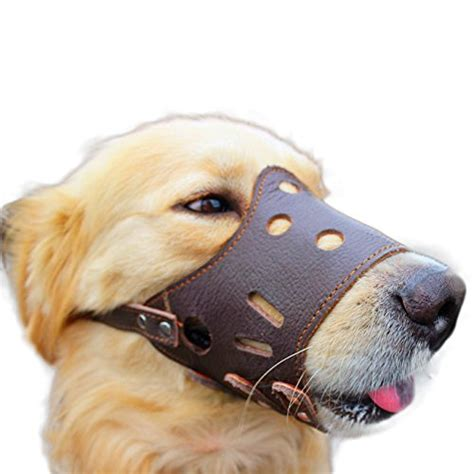 muzzle for biting muzzles for biting lookup beforebuying