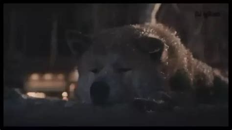 What is the saddest movie scene you have ever seen? - Quora Hachiko Movie2k