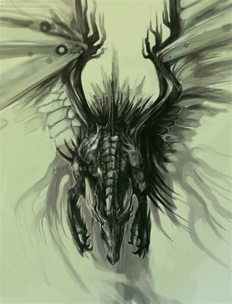 the best drawings of dragons 20 awesome dragon drawings top design magazine web