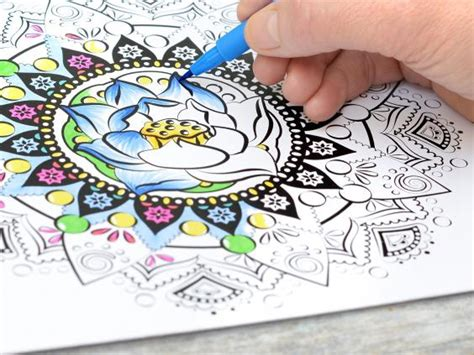 colouring book for adults waterstones colouring book craze prompts global pencil shortage
