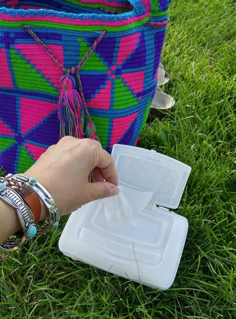 Cottonelle Sweepstakes - things to have in your bag for lollapalooza my highest self