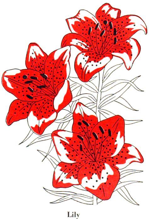 floral abundance quilt 9 blocks plus borders bonus pillow books embroidery flower patterns browse patterns