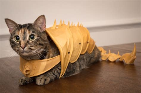 Kaos 3d Ca Batle And Big Size 3d printed battle armor for cats boing boing