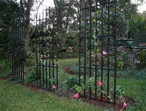 What Is A Garden Trellis popular types of trellises for climbing plants
