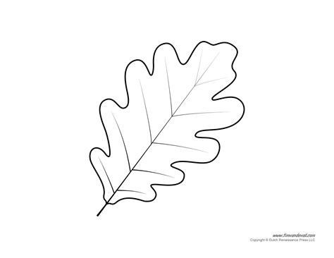free leaf outlines coloring pages