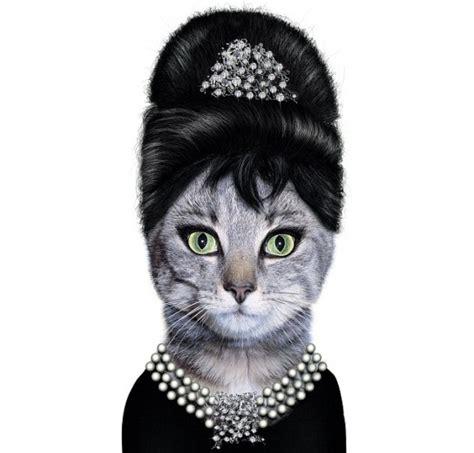 Iphone 66s Pets Rock Hepburn foto facce famose nei musi degli animali 1 di 12