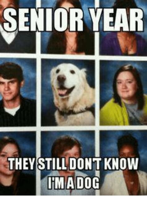 what they still dont 0553349619 funny senior year of 2016 on sizzle 9gag