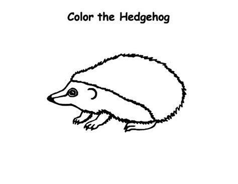 baby hedgehog coloring page bender robot coloring pages