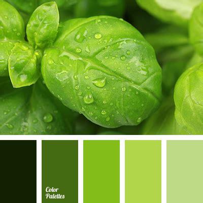 tea green color green monochrome color palette color palette ideas