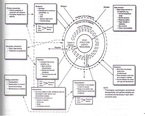 system model diagram betty neuman systems model diagram betty get free image
