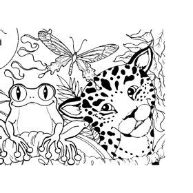 coloring pages of rainforest flowers elmo coloring sheets cleaning bathroom coloring pagesuper