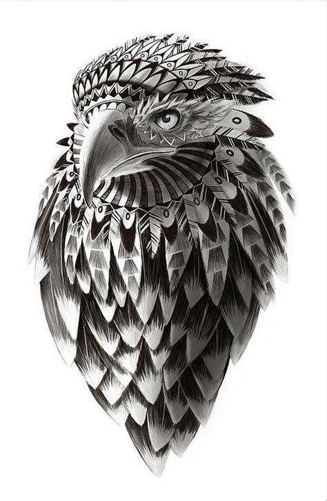 adler design eagle illustration