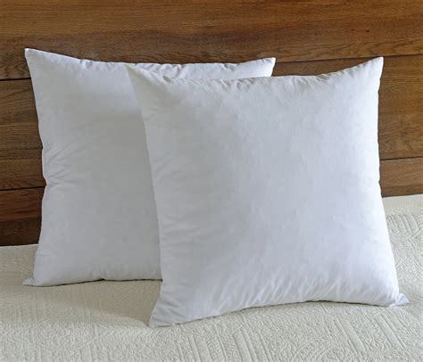 and feather pillow downluxe decorative feather pillow inserts set of 2