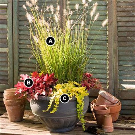 perennial container garden 22 best images about perennial container garden ideas on