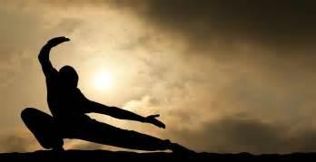 Martial Arts How To Choose Martial In Mixed Martial Arts