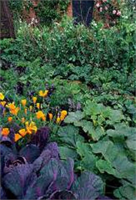 How Much Sun Does A Vegetable Garden Need How Much Sun Does Your Vegetable Garden Really Need