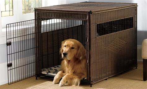 choosing outdoor dog kennel home pet care 10 best dog crates carriers and kennels of 2017 pet
