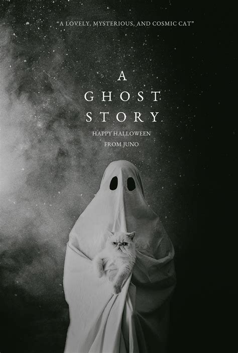 film a ghost story a ghost story the cat you and us