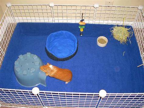 fleece guinea pig bedding guinea pig gallery piggybedspreads com fleece cage