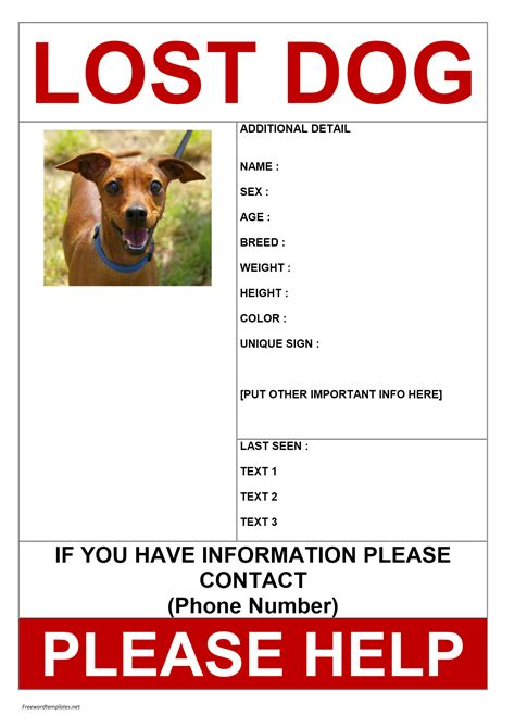 templates for lost pet flyers image gallery lost dog template