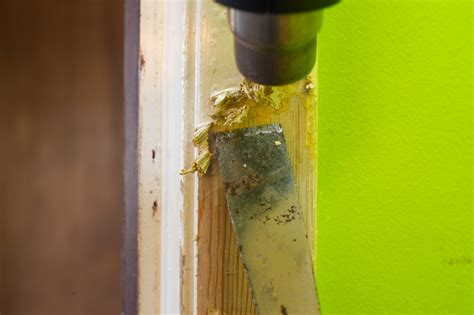 Acrylfarben Auf Holz by Acrylfarbe Holz Entfernen 187 So Wird S Gemacht