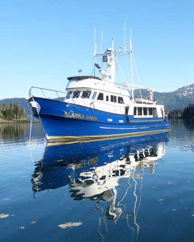 bear boat alaska bear adventures multi day bear viewing by boat