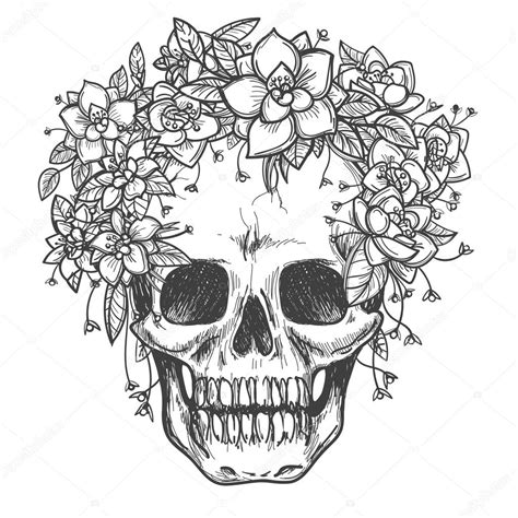 dead skull with rose flowers sketch stock vector