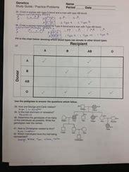 High School Biology Notes Shoemaker Science