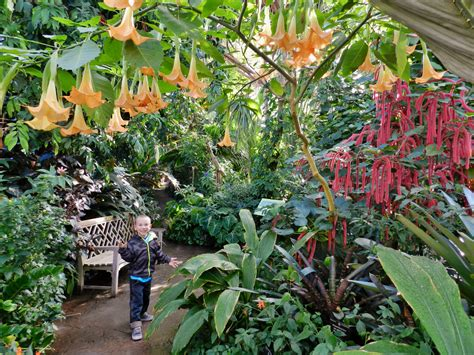 denver botanic gardens 2018 free days kid 101