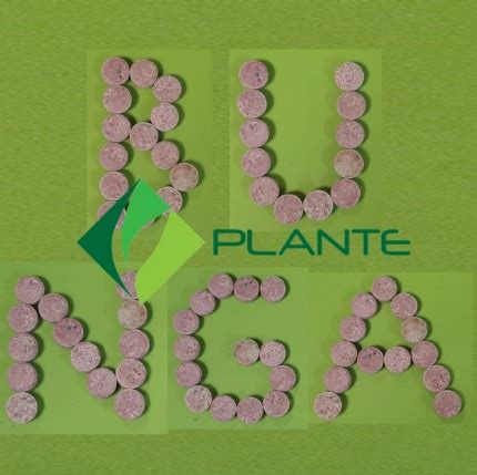 Pupuk Untuk Bunga Hias pupuk tablet plante bunga 250 gram jual tanaman hias