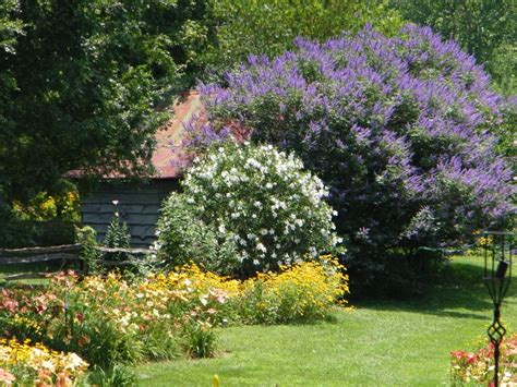 Stunning Garden Landscape Design Ideas With Small Flowering Trees For Small Gardens