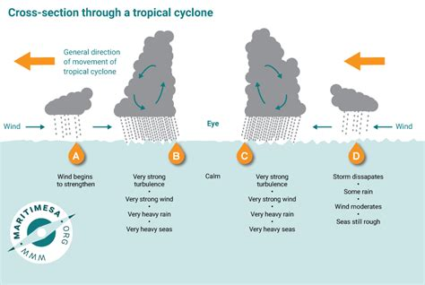 cross section of a tropical cyclone influence of weather systems on shipping operations