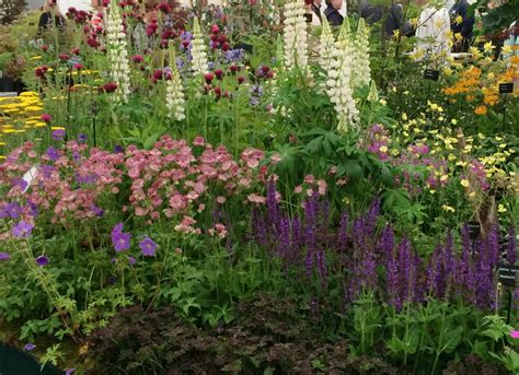 cottage garden planting gardeners world live my highlights growing family