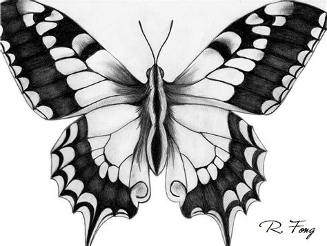 imagenes de mariposas a lapiz pin dibujos abstractos para colorear on pinterest