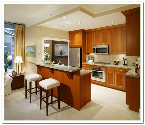 Small Kitchen Designs Photos Information On Small Kitchen Design Ideas Home And Cabinet Reviews