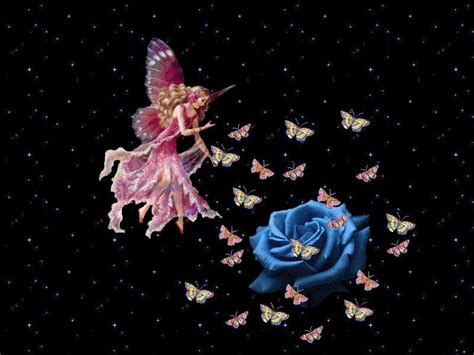 blue wallpaper pink roses pink fairy and blue rose background wallpapers fairy