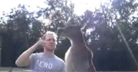 kangaroos levelling up sleeper hold unlocked neogaf