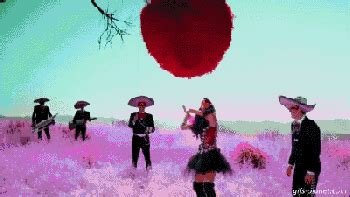 gif wallpaper of love mexican party music songs great for cinco de mayo yahoo