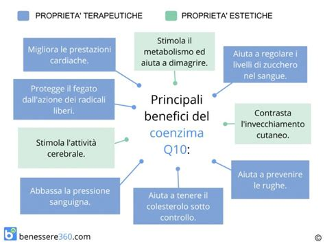 coenzima q10 dove si trova negli alimenti coenzima q10 propriet 224 e controindicazioni dove si trova