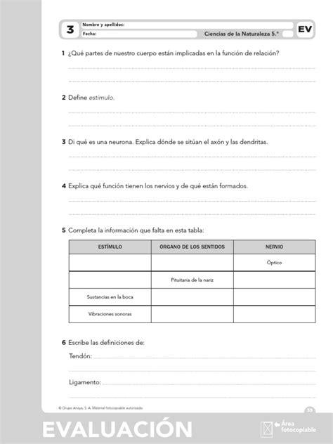 saber hacer 3 de primaria ciencias sociales evaluacion de contenidos anaya saber hacer tema 3