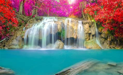 beautiful waterfalls with flowers beautiful flowers waterfalls gardening flower and vegetables