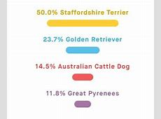 Embark Dog DNA Test Review and Coupon Code - That Mutt Family Tree Dna Coupon Code 2017
