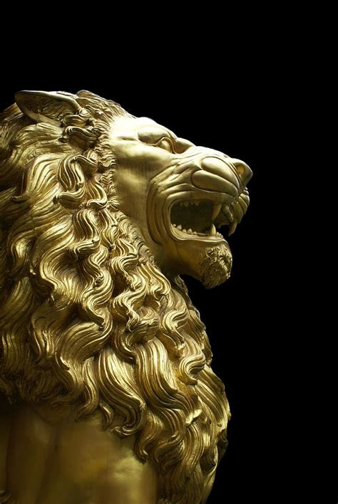 gold film craft lion golden lion by gregory smith