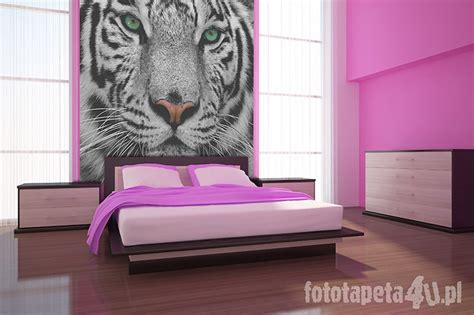 white tiger bedroom 10 best white tiger images on pinterest white tigers wild animals and bengal tiger