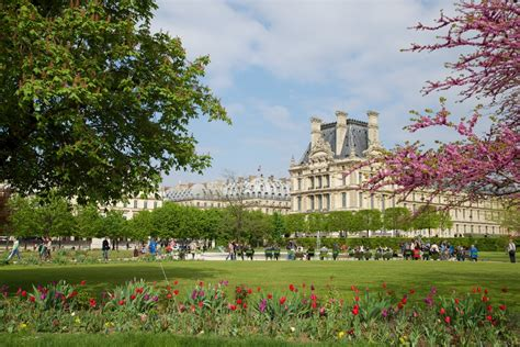 Tuileries Garden by Musee Du Louvre As Seen From Tuileries Gardens